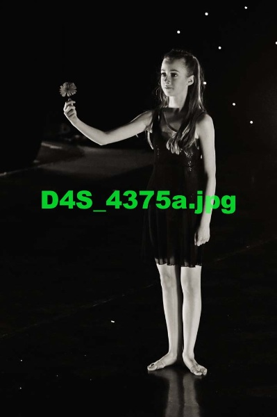 D4S 4375a