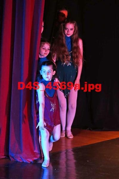 D4S 4569a