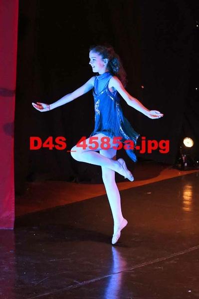 D4S 4585a