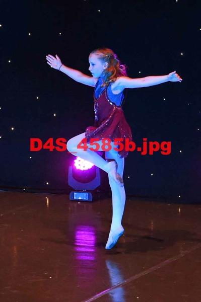 D4S 4585b