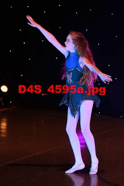 D4S 4595a