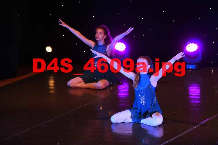 D4S 4609a