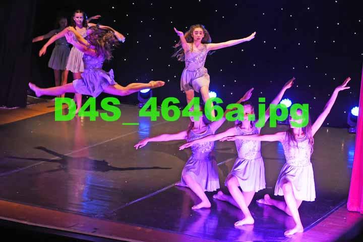 D4S 4646a