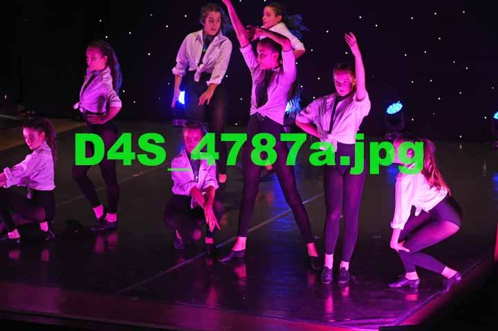 D4S 4787a