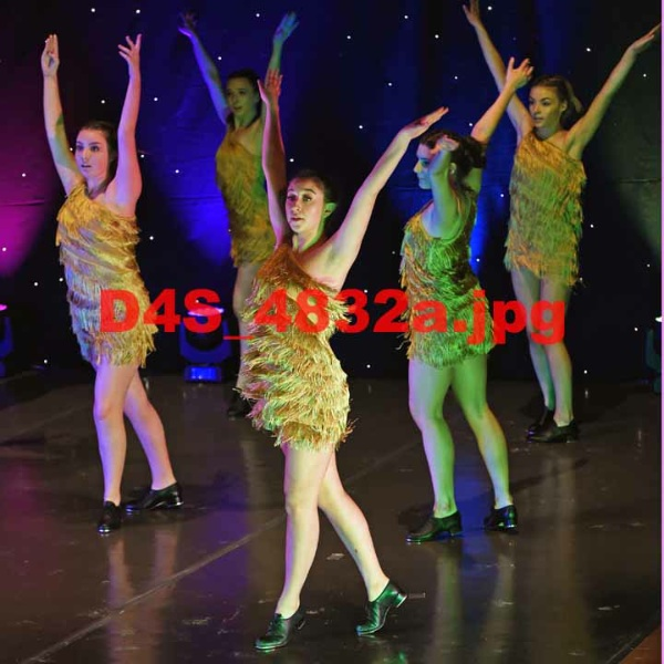 D4S 4832a