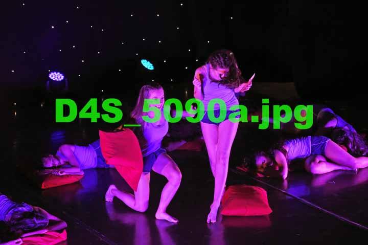D4S 5090a