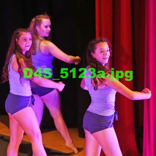 D4S 5123a