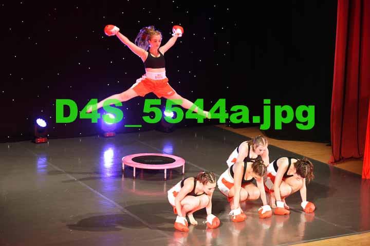 D4S 5544a