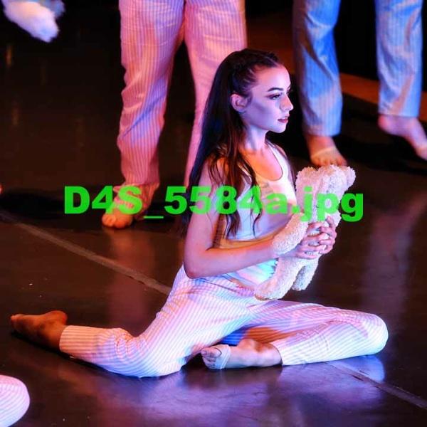 D4S 5584a