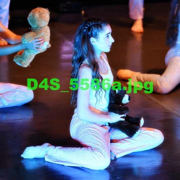 D4S 5586a
