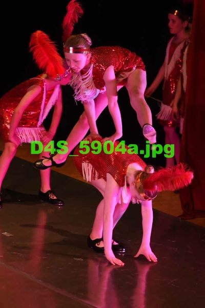 D4S 5904a