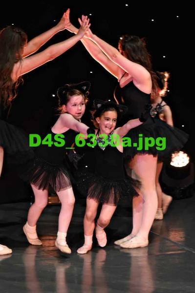 D4S 6338a