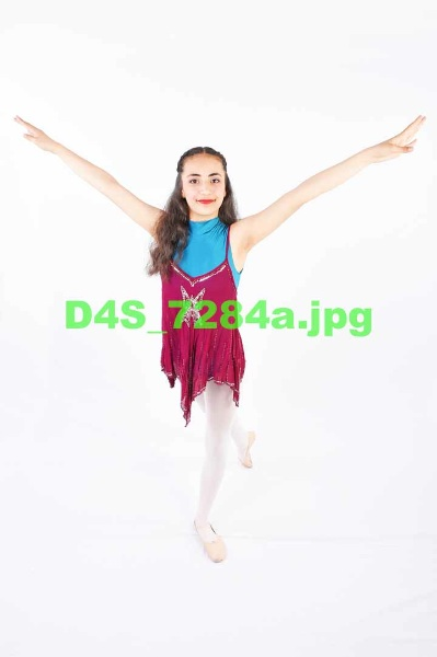 D4S 7284a