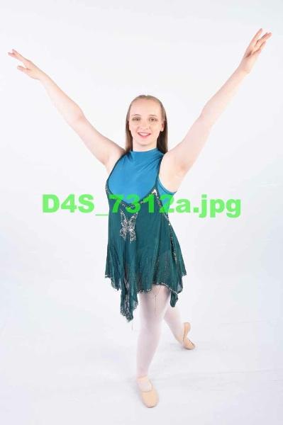D4S 7312a