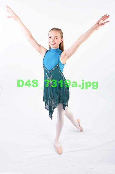 D4S 7319a