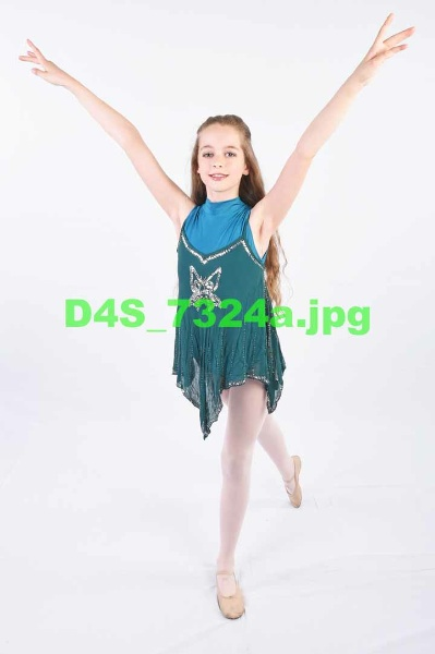 D4S 7324a