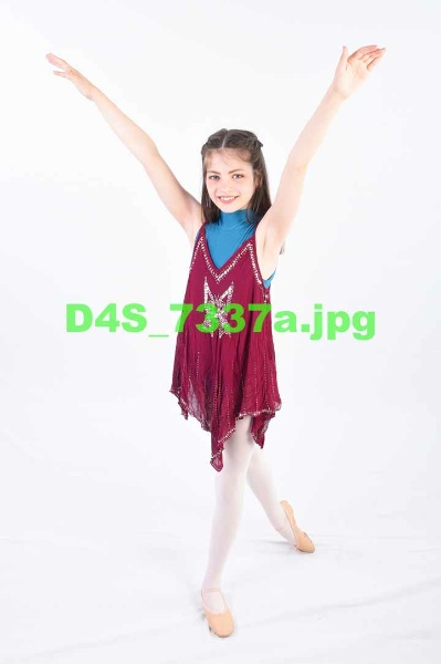 D4S 7337a