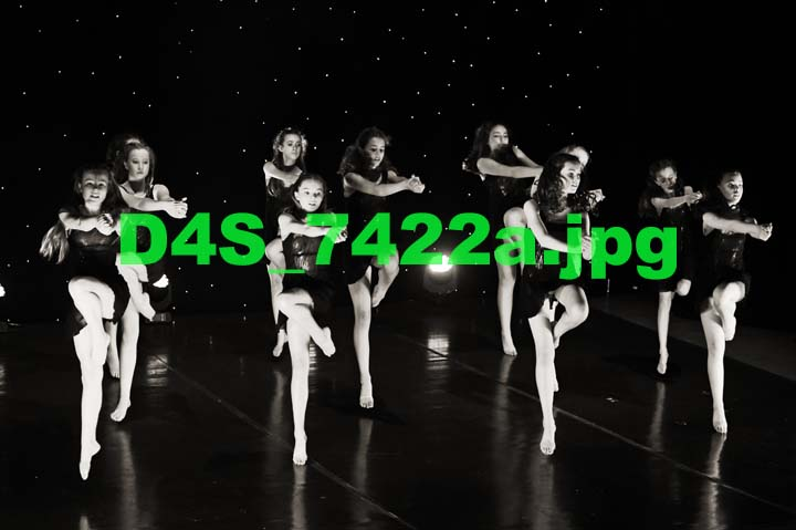 D4S 7422a