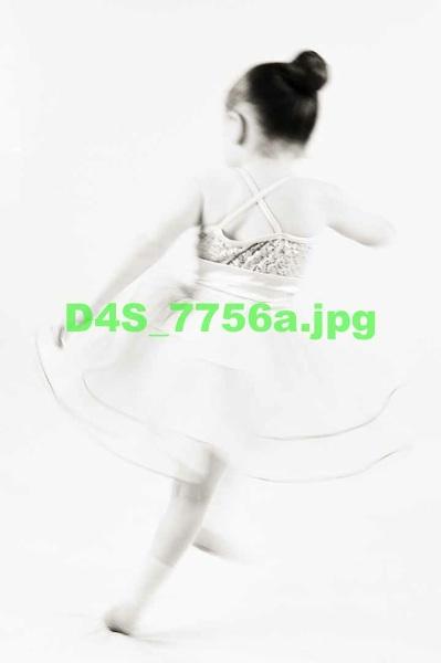 D4S 7756a