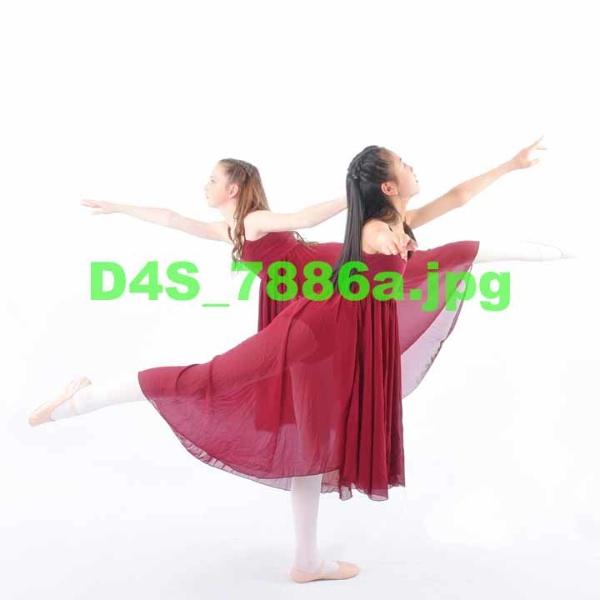 D4S 7886a