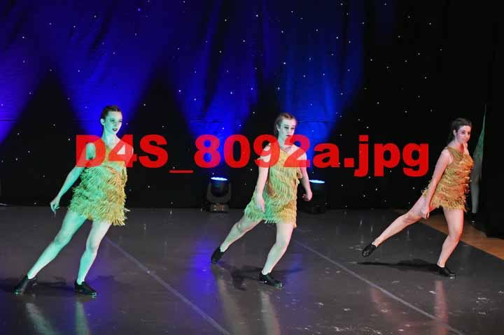 D4S 8092a