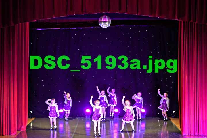 DSC 5193a