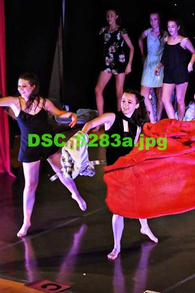 DSC 5283a