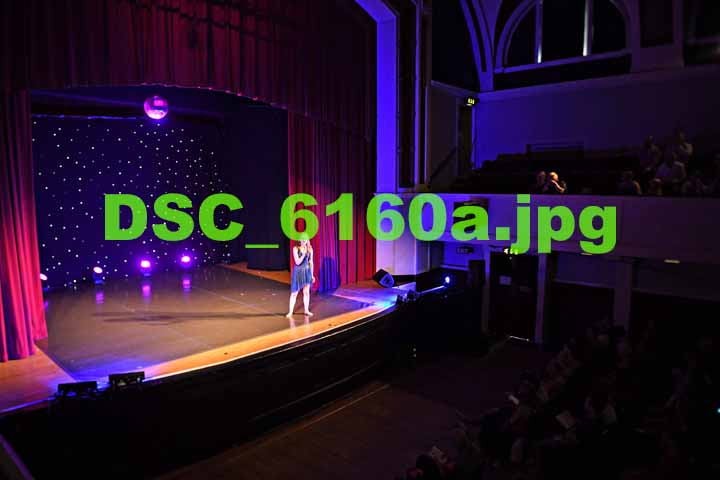 DSC 6160a