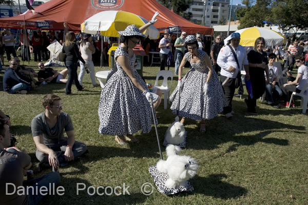 Entertainers attempt to control their dogs amongst the crowd at the 2010 Brisbane Pride Fair Day.