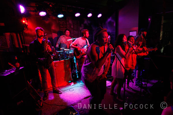 Chocolate Strings, The Joynt 2013