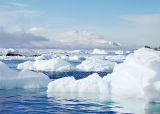 Cuverville Ice Floes