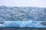 Crocker Bay Glacier