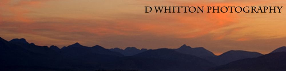 D Whitton Lansdscape Photography