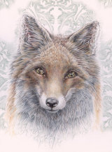 Baroque Fox - £485 - pure colour pencil