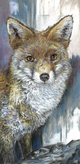 Brave Little Fox - £485 - colour pencil - WINNER Best in Show, UKCPS regional 2016