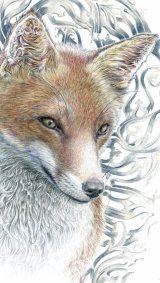 Gothic Fox - £425 - pure colour pencil