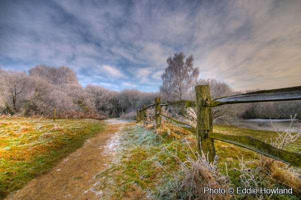 Ditchling Common