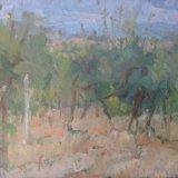 Tuscan Vineyard (1990)