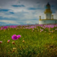 Chanonry Lighthouse