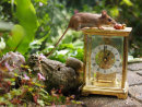 Cute Long Tailed Fieldmouse on Clock