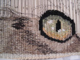 The eye completed