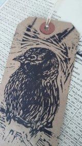 Lino sparrow