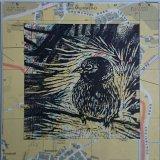Sparrow map