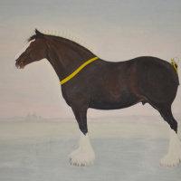 Tony Brown - Heaton Majestic