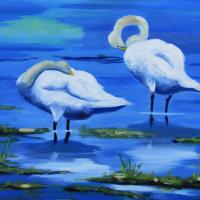 Bob Wells - Welney Swans