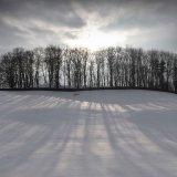 Long Snow Shadows