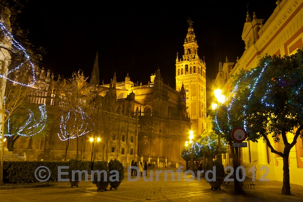 Catedral and Giralda at night