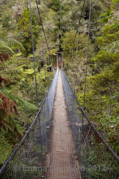 Falls River suspension bridge