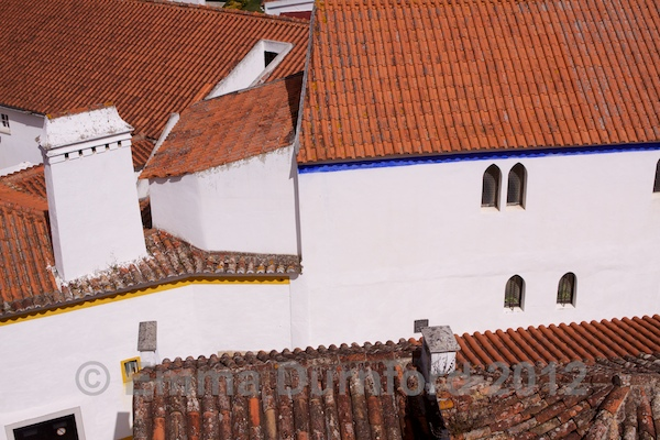 Terracotta tiled roofs