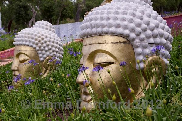 Gold Buddha heads